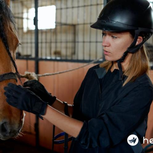 Die Haltung von mehreren Pferden im Offenstall oder auf der Weide wird immer beliebter - doch wer haftet im Schadensfall?