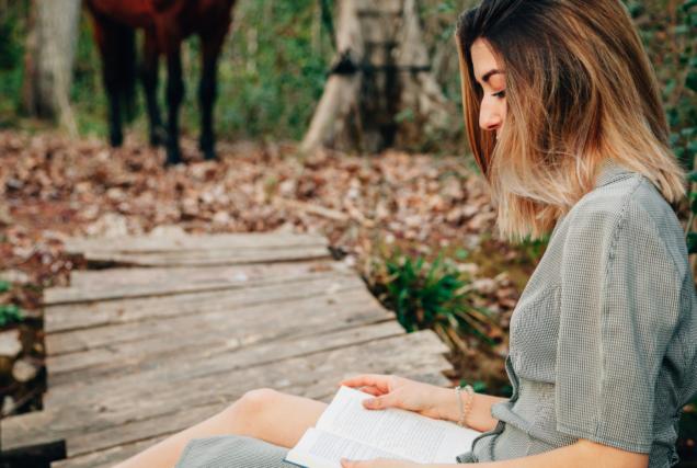 Es gibt unzählige Pferdebücher auf dem Markt, und manche davon sind besonders wertvoll für dich. Unsere Auswahl an Klassikern, die jede/r Reiter/in gelesen haben muss!