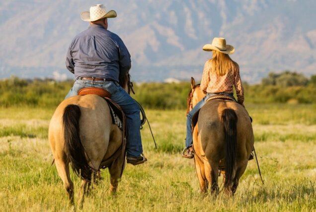 Ob du wirklich zu schwer für dein Pferd bist, hängt nicht nur von deinem Gewicht ab – auch andere Faktoren zählen mit hinein.